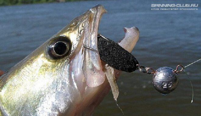 Ловля судака на поролоновую рыбку