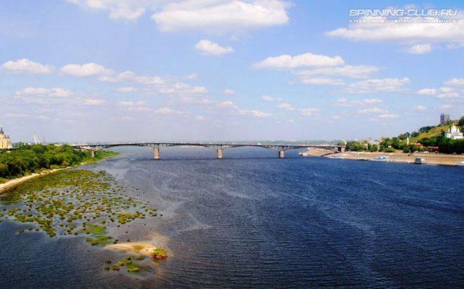Рыбалка на Оке в Нижнем Новгороде: лучшие места и снасти