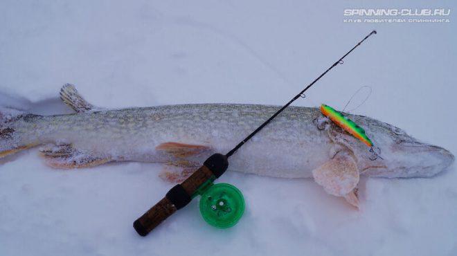 Раттлины для зимней рыбалки: как ловить, какие выбрать?
