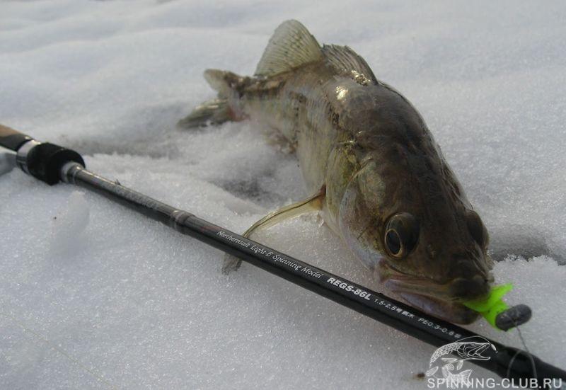 Ловля щуки на силикон зимой